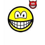 Devil on shoulder smile   womens_apparel_tshirt