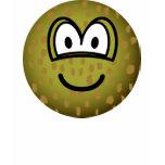 Toad emoticon   womens_apparel_tshirt