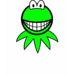 Kermit the Frog smile   womens_apparel_tshirt
