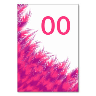 Women's Beautiful Birthday Pink Purple Feather Age Card