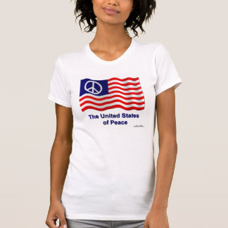 Womens Destroyed T-Shirt