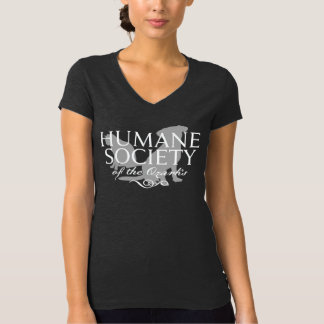 Women's Dk Gray Heather Bella Jersey V-Neck Shirt