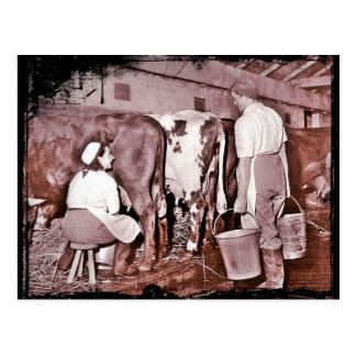 Women's Land Army DAIRY WWII Post Cards