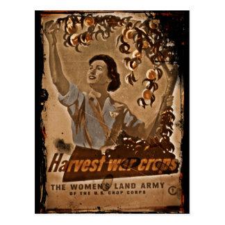 Women's Land Army Harvesting Postcard
