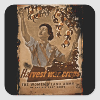 Women's Land Army Harvesting Square Sticker