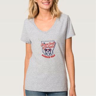 Women's Lt. Steel Hanes Nano V-Neck T-Shirt
