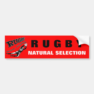 Women's Rugby #2 Bumper Stickers