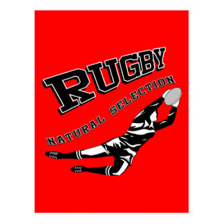 Women's Rugby #2 Postcard
