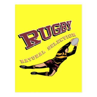 Women's Rugby #2 RY Postcard