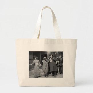 Women's Suffrage Handouts, 1913 Bag