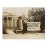Women's Suffragette Bonfire in Washington D.C. Postcards