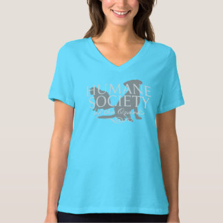 Women's Turquoise Bella Relaxed-Fit V-Neck Shirt