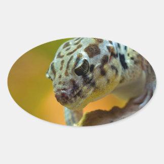 wonder-gecko-2560 oval sticker