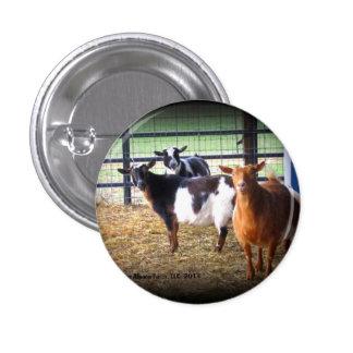 Wonder Goats Pinback Buttons