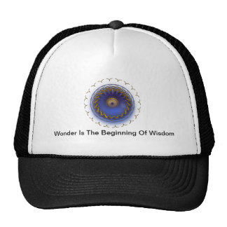 Wonder Is The Beginning Hat