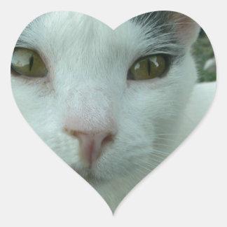 Wonder Look Heart Sticker