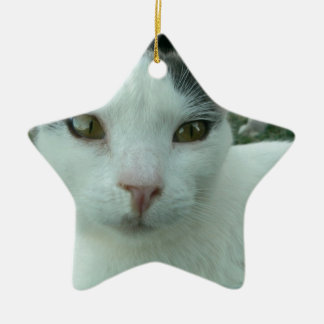Wonder Look Christmas Tree Ornament