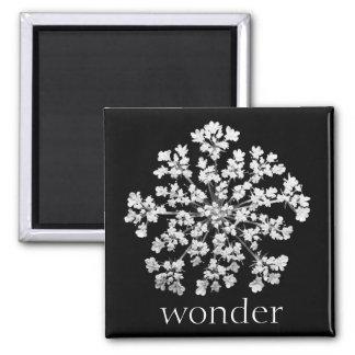 Wonder Magnet