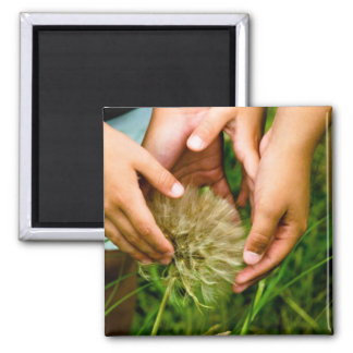 Wonder of Nature Photo Magnet