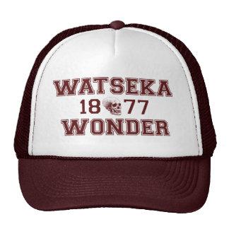 Wonder Pride! Trucker Hat