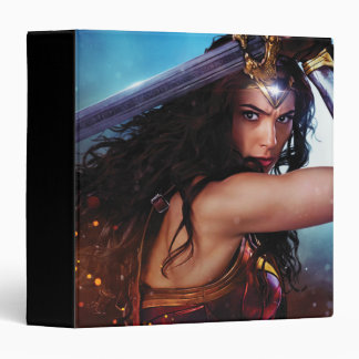 Wonder Woman Blocking With Sword Binder
