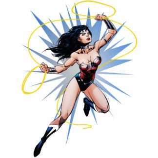 Wonder Woman & Lasso of Truth Cutout