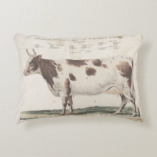 Wonderful & beautiful vintage cow pillow. accent pillow