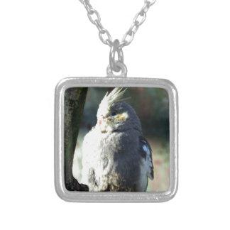 Wonderful Bird Jewelry