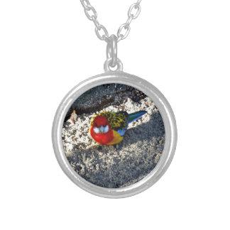 Wonderful Bird Custom Jewelry