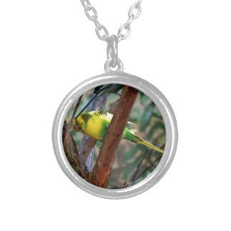 Wonderful Birds Custom Jewelry