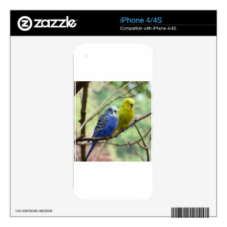 Wonderful Budgies iPhone 4S Decal