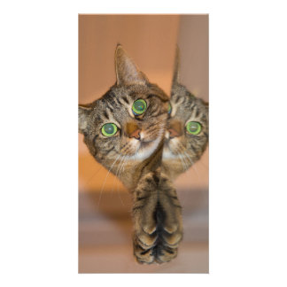 Wonderful Cat Card