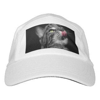 Wonderful Cat Headsweats Hat