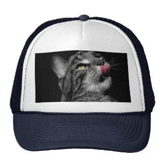 Wonderful Cat Trucker Hat