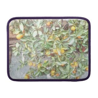 Wonderful Chinese Orange plant MacBook Sleeve
