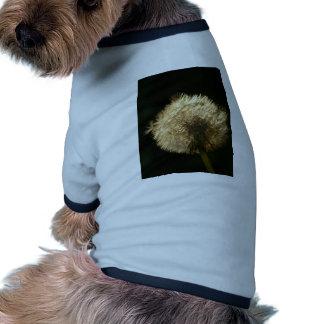 Wonderful Dandelion Dog Tee Shirt