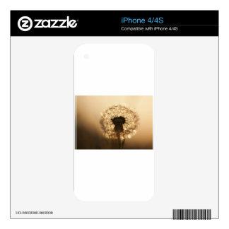 Wonderful Dandelion iPhone 4S Decals