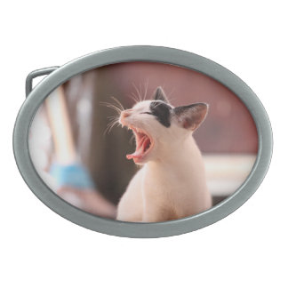 Wonderful Dangerous Cat Oval Belt Buckle