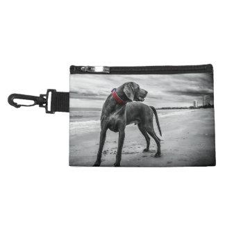 Wonderful Dog Accessories Bags