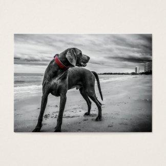 Wonderful Dog Business Card