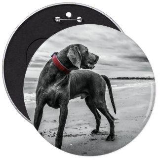 Wonderful Dog Pins