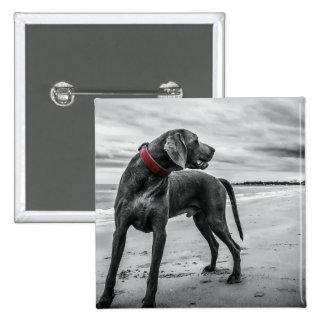 Wonderful Dog Button