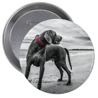 Wonderful Dog Buttons