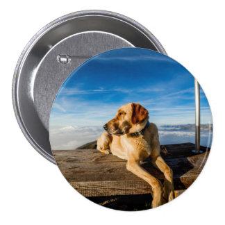 Wonderful Dog Pinback Button