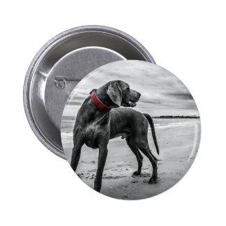 Wonderful Dog Pinback Buttons