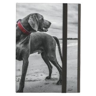 Wonderful Dog iPad Air Cover