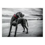 Wonderful Dog Large Business Card