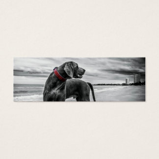 Wonderful Dog Mini Business Card