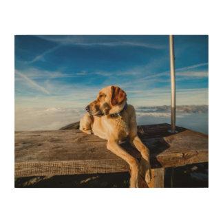 Wonderful Dog Wood Canvases