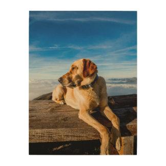 Wonderful Dog Wood Canvas